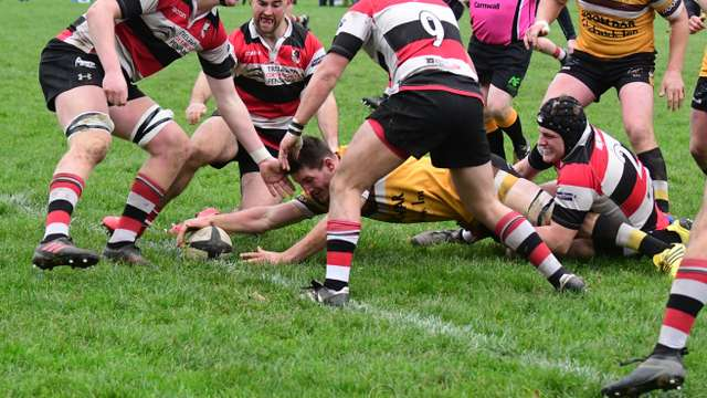 Cornwall Cup 2nd round. Wadebridge Camels 45pts v Pirates Amateurs 22 pts