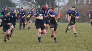 u14 East Grinstead 36  v  10 Uckfield (Youth Competition)