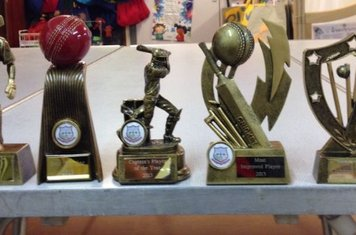 Best Batsman (2013), Best Bowler (2013), Most Improved Player (2013), Best Team Player (2013), Club Member of the Season (2013)