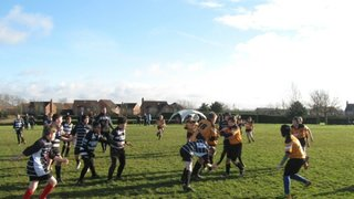 U12's Training Pays off with Win