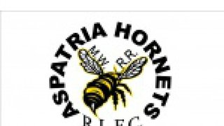 HORNETS MOVE TODAY'S GAME TO BOWER PARK