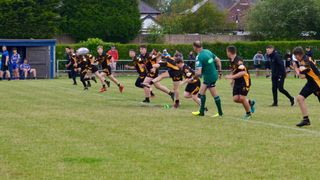 Crosfields v Bears Blacks