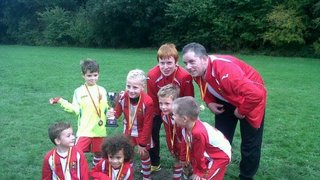 harlow town under 8s