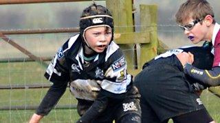 Milton Keynes Under 12s pip Towcester in local derby