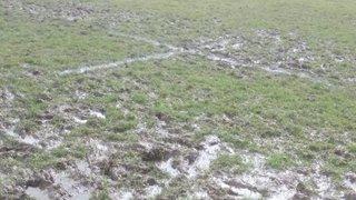 Trentham vs Telford Game postponed