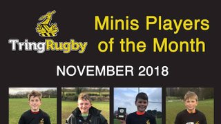 TringRugby Mini Section November 2018 Player of the Month  Awards