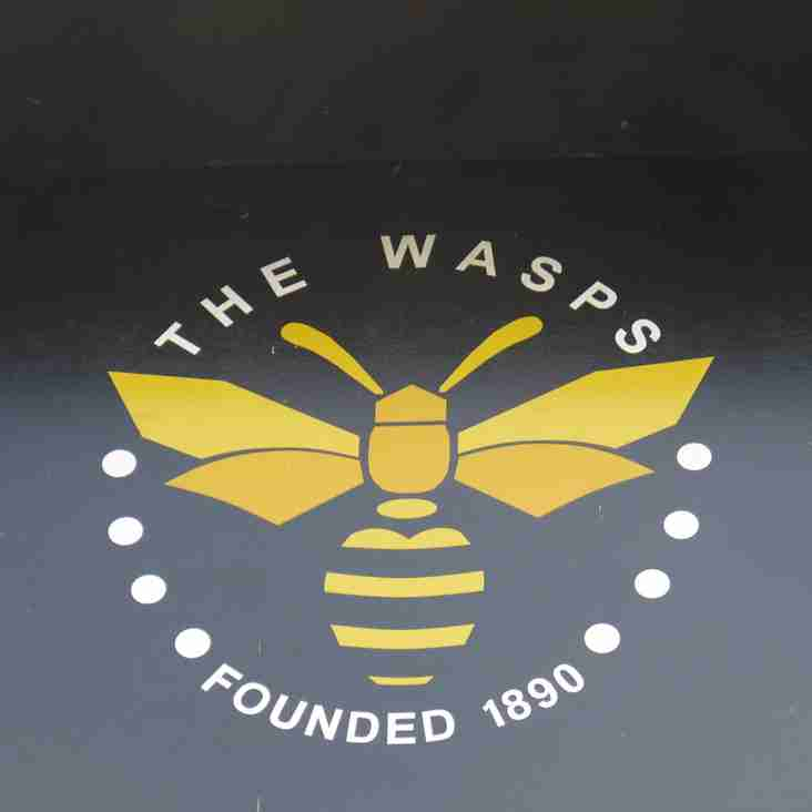 A trio of Wasps