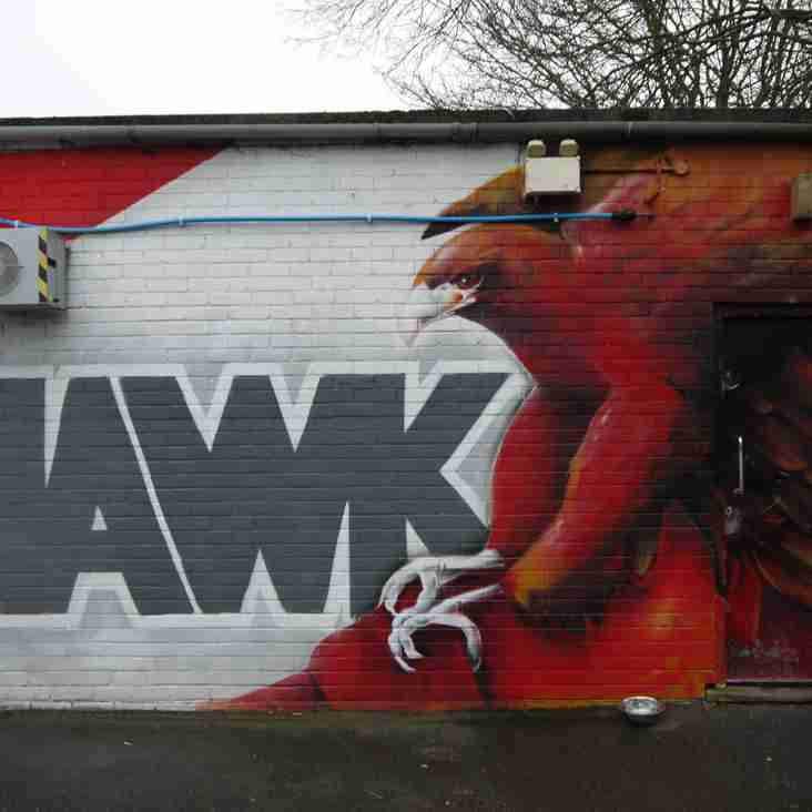 Hawks hit the heights, Blues held by Blues, whilst Green Elephants have a night they'd like to forget…