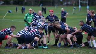 Dev. XV vs Westcombe Park