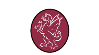 Somerset Cricket Board - Women's Structure 2020-2024