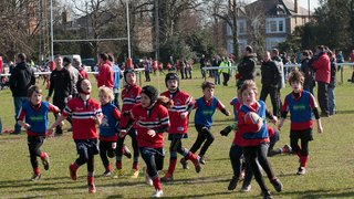 London Welsh Minis Festival 23 March 15 - Great finale to a great weekend of rugby.
