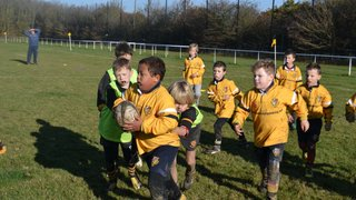 Burnham U9's working hard
