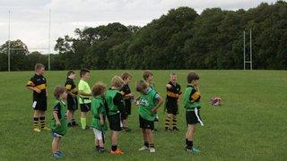 North Meath Mini's Training