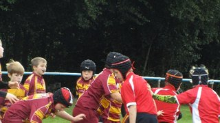 Manchester hunt down the Tigers