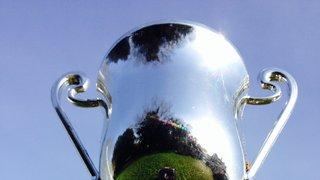 U8s Cup Winners at Diss Festival