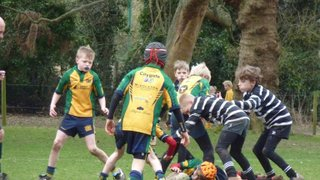 Under 10's vs Henley 8th March 2015