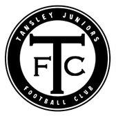 Tansley Juniors FC Mini-Soccer Tournament 2019