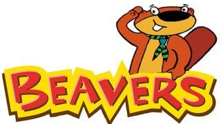 Didsbury Beavers Scouts
