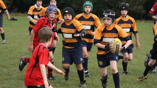 Trojans Tournament  Under 11s