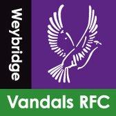 Rugby Report Weybridge Vandals w/c 23rd May
