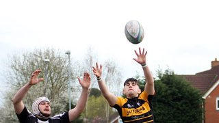 2XV safe with win over Wells