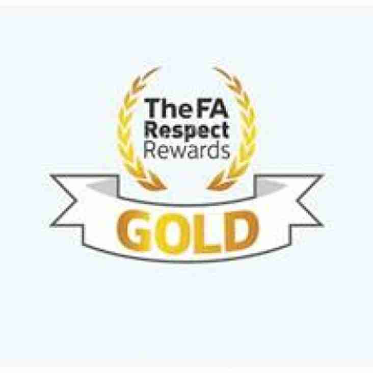 FA emphasise Respect programme