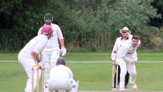 1st XI vs Wellesbourne CC - Home - 2017