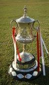 Match Preview - Stourbridge v Halesowen Town