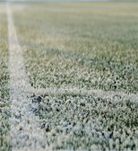 Tonight's match with MK Dons is OFF