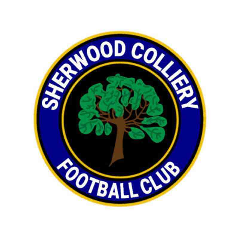 20180728a - Teversal FC Res v Sherwood Colliery Res