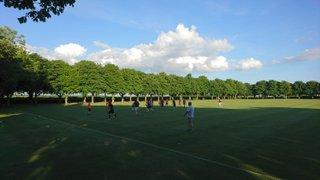 Training starts 1st June 7pm