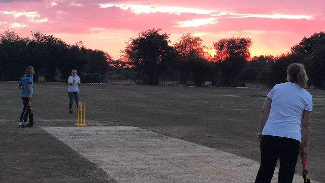 Prosecco Cricket