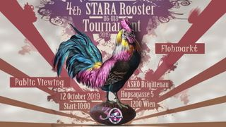 4th Rooster Turnament