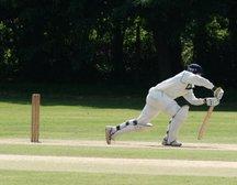 Cricket Performance Camp