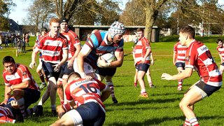 CRFC XV vs Hove - Away 19th October 2019