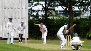 Hertford Cricket Week (22nd-26th July)