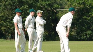 Hertford First XI dealt heavy defeat at the hands of Radlett