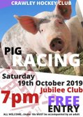 Oink Oink tonight is the night - Pig Racing