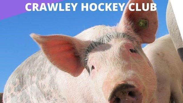 CHC Social - Pig Racing Saturday 19th October