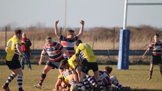 Grove RFC v Leighton Buzzard