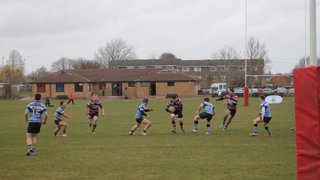 Grove RFC v Newbury Blues 28/03/2015