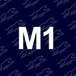 Men's 1st XI