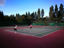 Tennis Coach Update