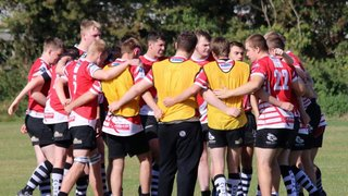 Colts go down to Psyched up Stockwood