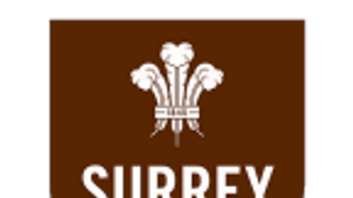 Surrey 50+ vs Herefordshire 50+ Home Counties Championship - Representative Game