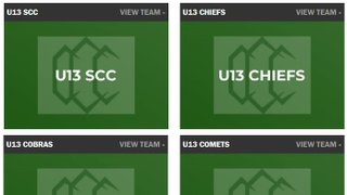 U13 - Juniors Teams Structure and Plans for 2019
