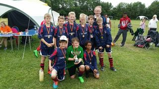Tigers Tournament 5th July 2015