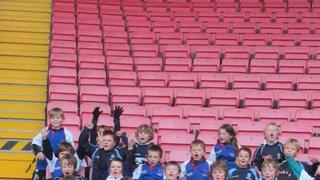 Darlington Mowden Park RFC u6, u7 and u8 shine in the spotlight at the Northern Echo Arena