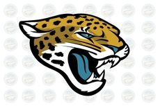 U11 Jaguars