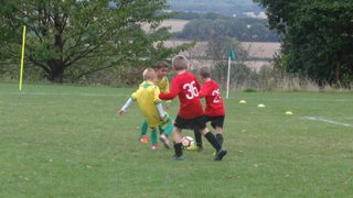 Westfield FC v Foresters Wolves U8 (25 September 2016)